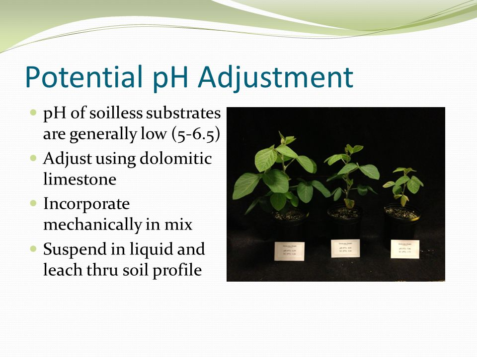 Potential pH Adjustment pH of soilless substrates are generally low (5-6.5) Adjust using dolomitic limestone Incorporate mechanically in mix Suspend in liquid and leach thru soil profile