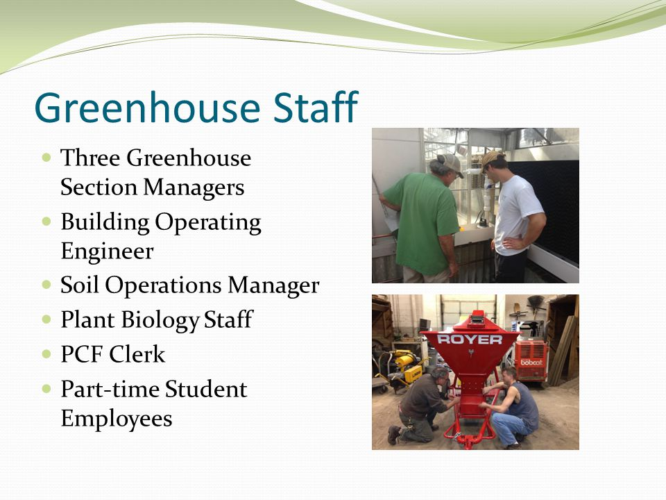 Greenhouse Staff Three Greenhouse Section Managers Building Operating Engineer Soil Operations Manager Plant Biology Staff PCF Clerk Part-time Student Employees