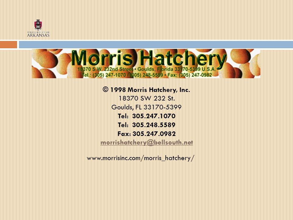 www.morrisinc.com/morris_hatchery/ © 1998 Morris Hatchery, Inc.