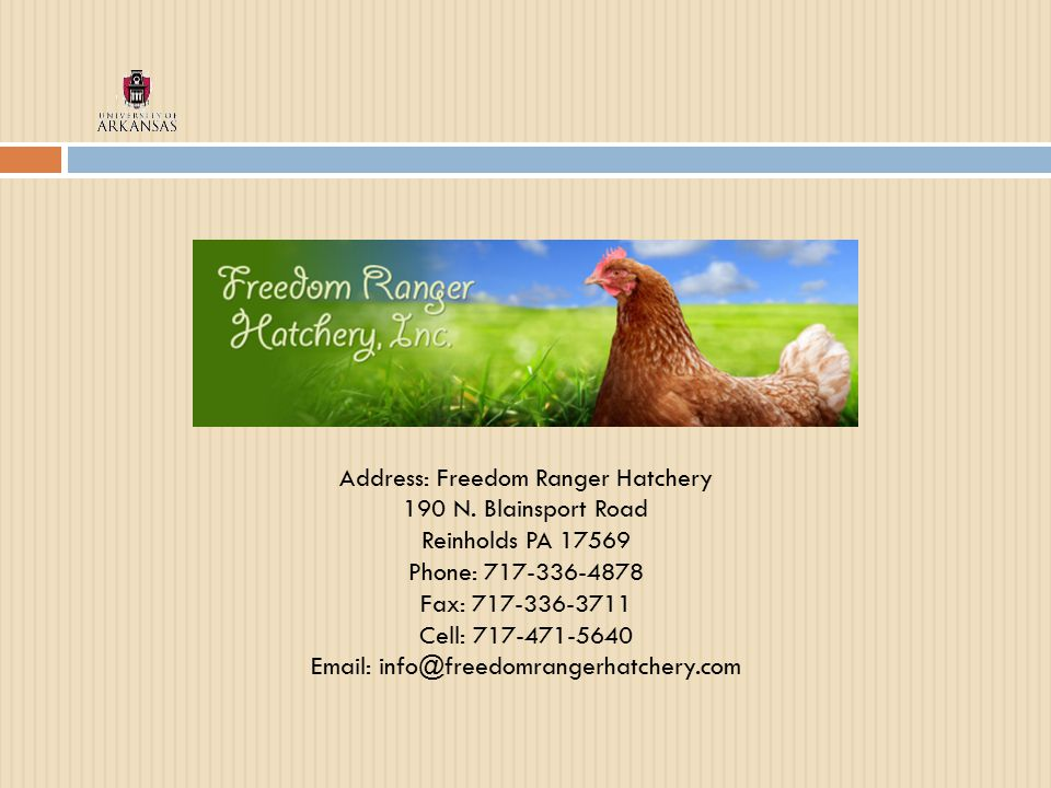Address: Freedom Ranger Hatchery 190 N.