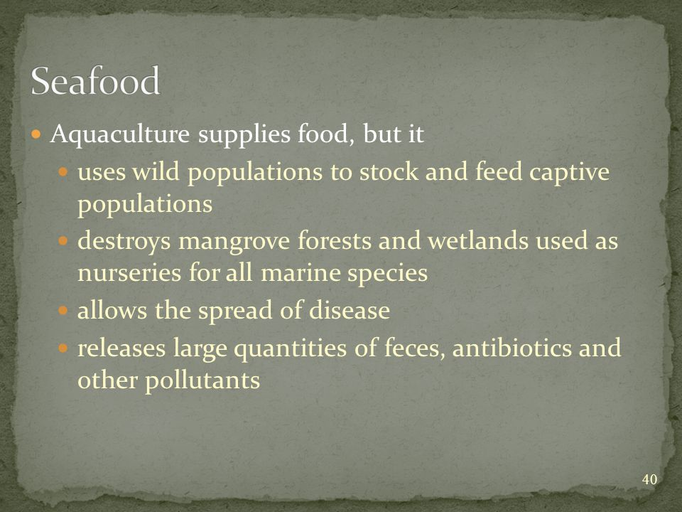 Aquaculture supplies food, but it uses wild populations to stock and feed captive populations destroys mangrove forests and wetlands used as nurseries for all marine species allows the spread of disease releases large quantities of feces, antibiotics and other pollutants 40