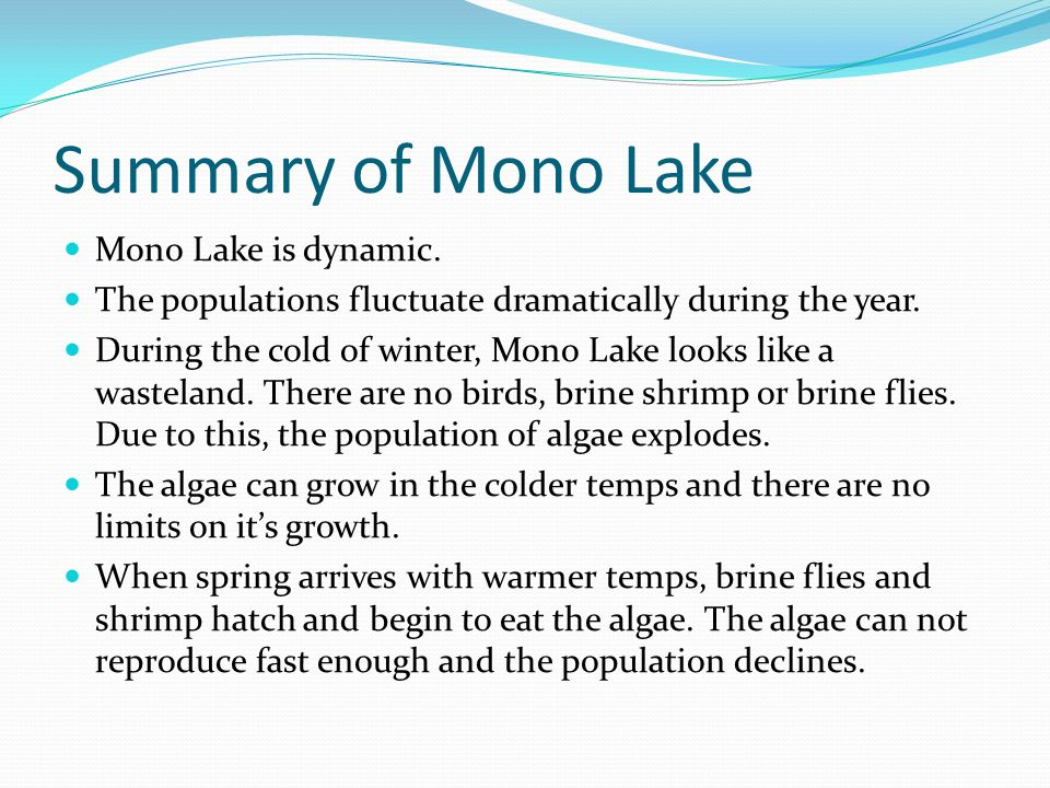 Summary of Mono Lake Mono Lake is dynamic. The populations fluctuate dramatically during the year. During the cold of winter, Mono Lake looks like a w