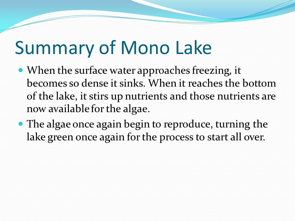 Summary of Mono Lake When the surface water approaches freezing, it becomes so dense it sinks. When it reaches the bottom of the lake, it stirs up nut