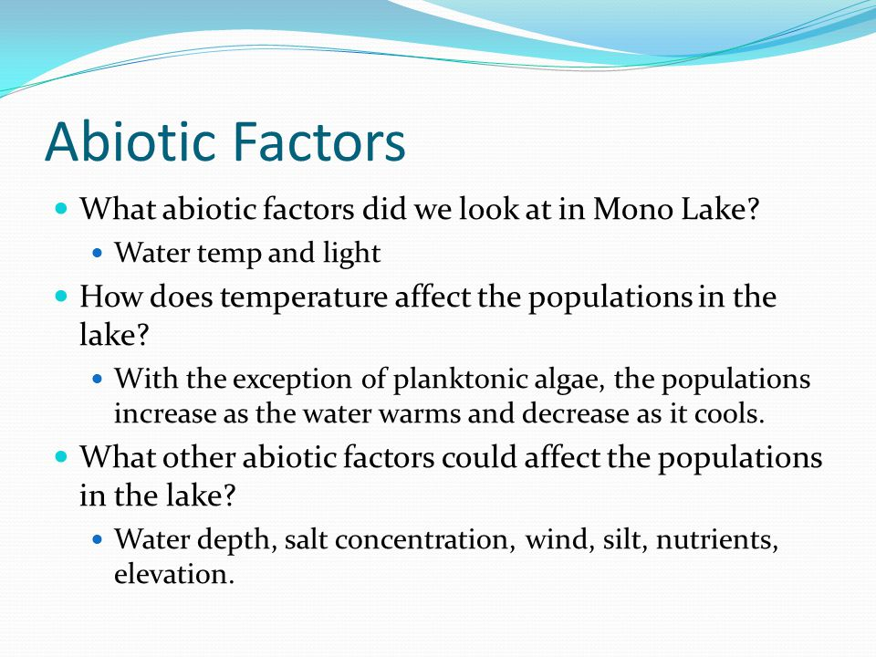 Abiotic Factors What abiotic factors did we look at in Mono Lake? Water temp and light How does temperature affect the populations in the lake? With t