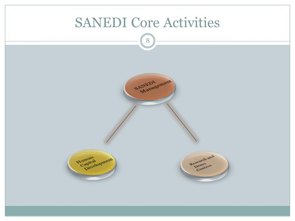 SANEDI Core Activities 8