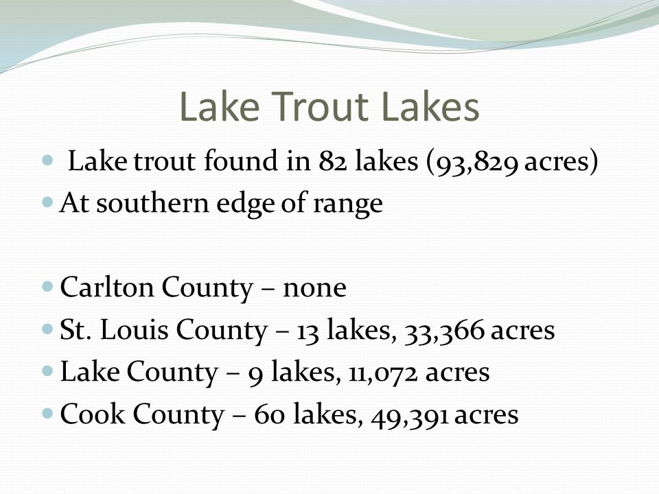 Lake Trout Lakes Lake trout found in 82 lakes (93,829 acres) At southern edge of range Carlton County – none St.