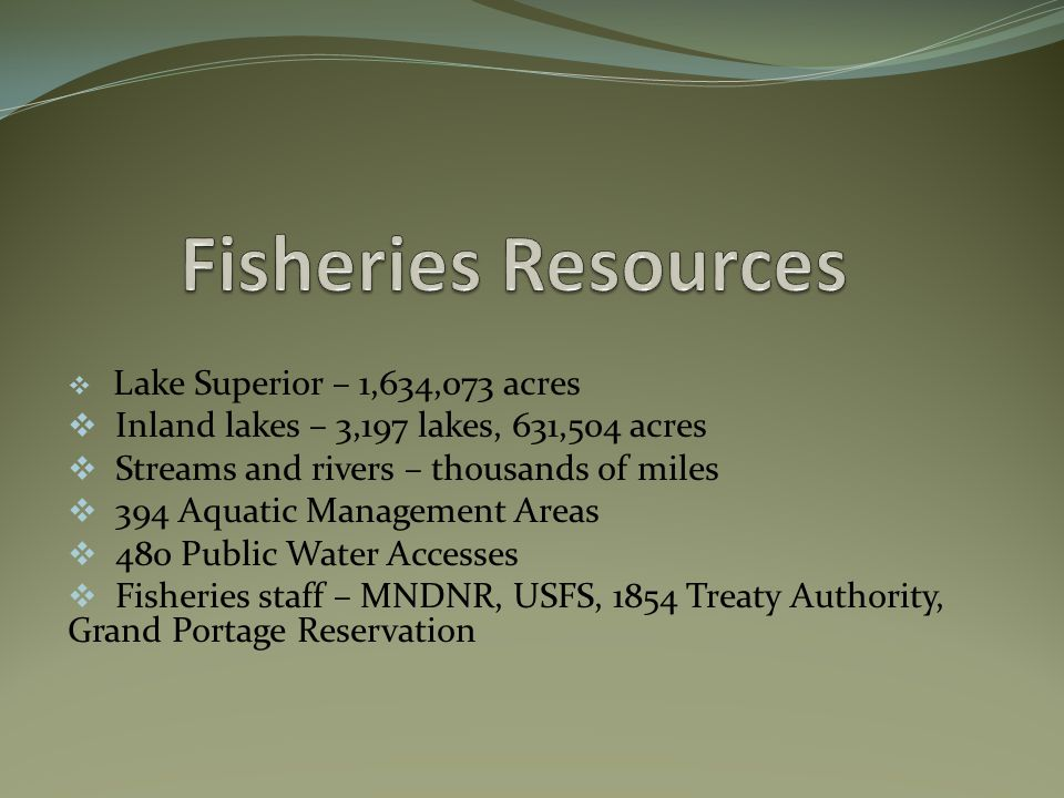  Lake Superior – 1,634,073 acres  Inland lakes – 3,197 lakes, 631,504 acres  Streams and rivers – thousands of miles  394 Aquatic Management Areas  480 Public Water Accesses  Fisheries staff – MNDNR, USFS, 1854 Treaty Authority, Grand Portage Reservation