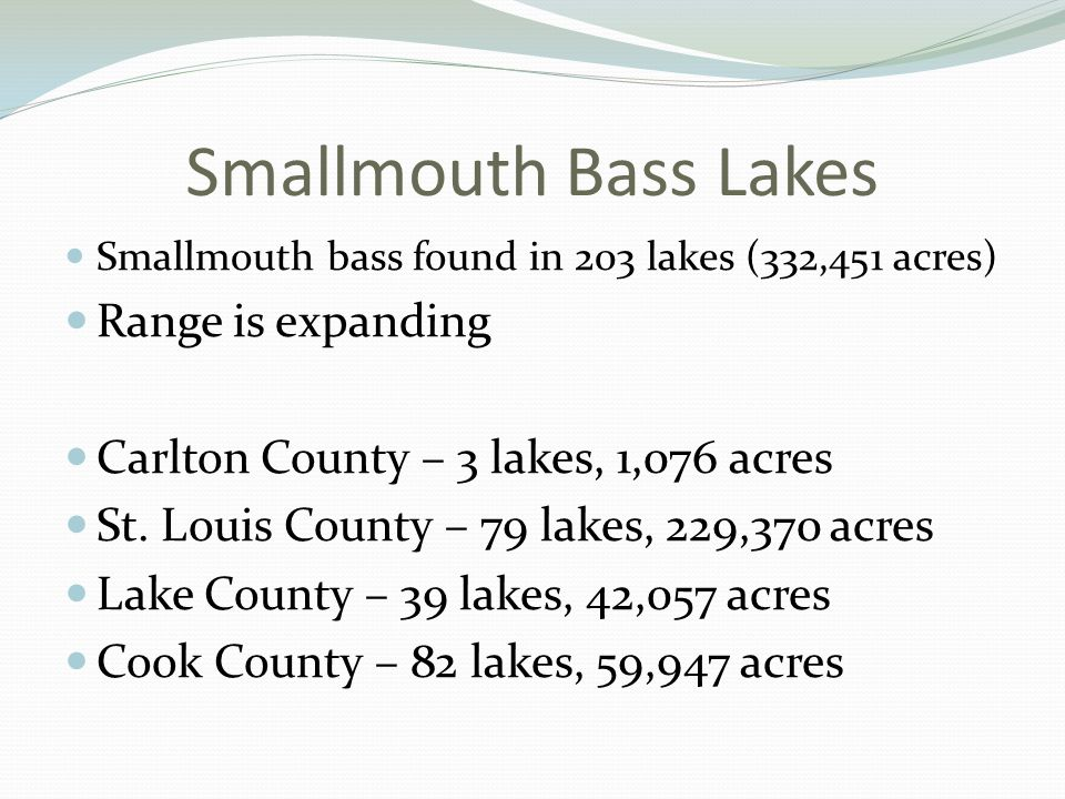 Smallmouth Bass Lakes Smallmouth bass found in 203 lakes (332,451 acres) Range is expanding Carlton County – 3 lakes, 1,076 acres St.