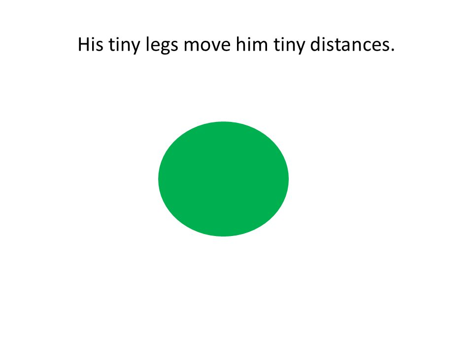 His tiny legs move him tiny distances.