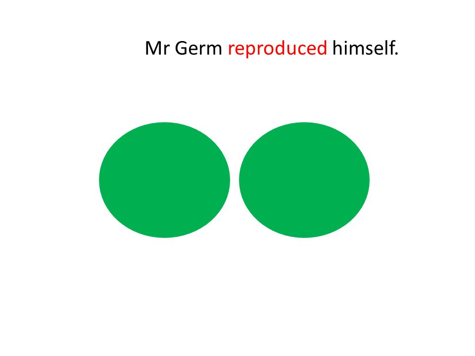 Mr Germ reproduced himself.