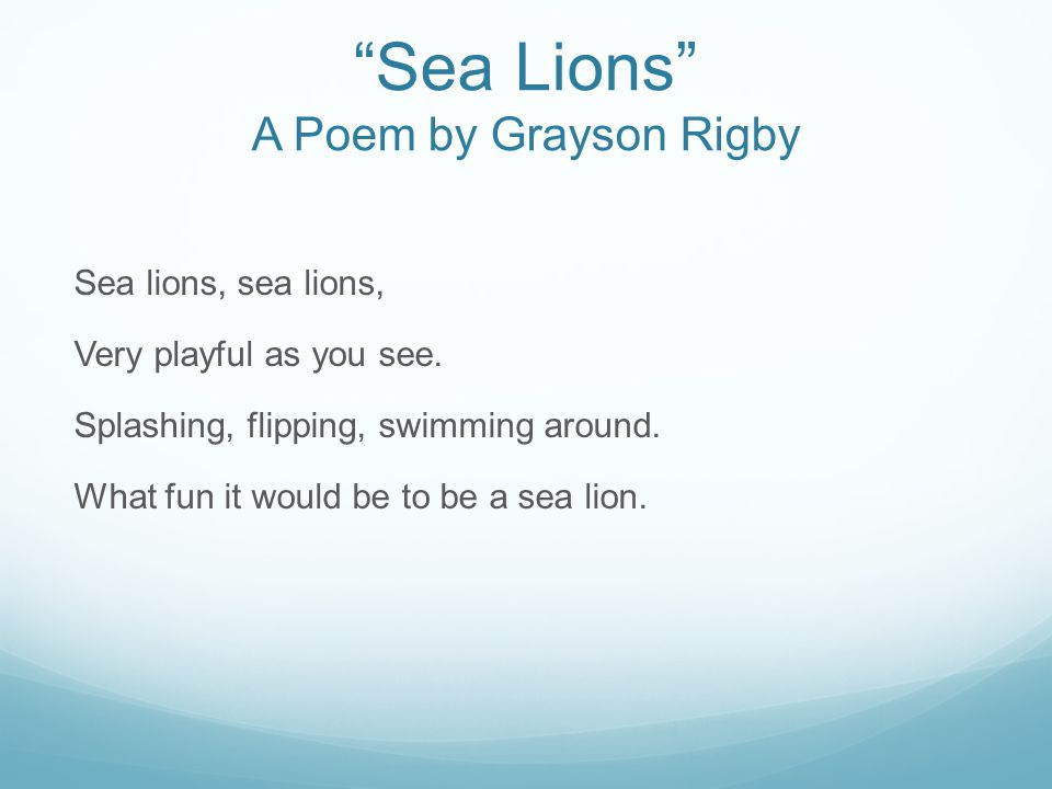"""Sea Lions"" A Poem by Grayson Rigby Sea lions, sea lions, Very playful as you see. Splashing, flipping, swimming around. What fun it would be to be a"