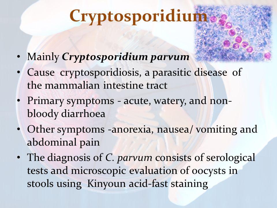 Cryptosporidium Mainly Cryptosporidium parvum Cause cryptosporidiosis, a parasitic disease of the mammalian intestine tract Primary symptoms - acute, watery, and non- bloody diarrhoea Other symptoms -anorexia, nausea/ vomiting and abdominal pain The diagnosis of C.