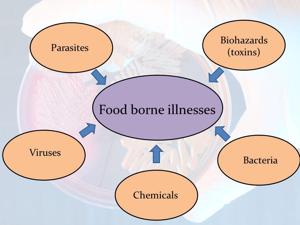 Food borne illnesses Parasites Viruses Biohazards (toxins) Bacteria Chemicals