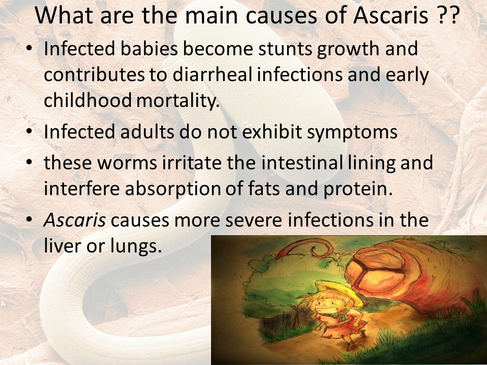What are the main causes of Ascaris .
