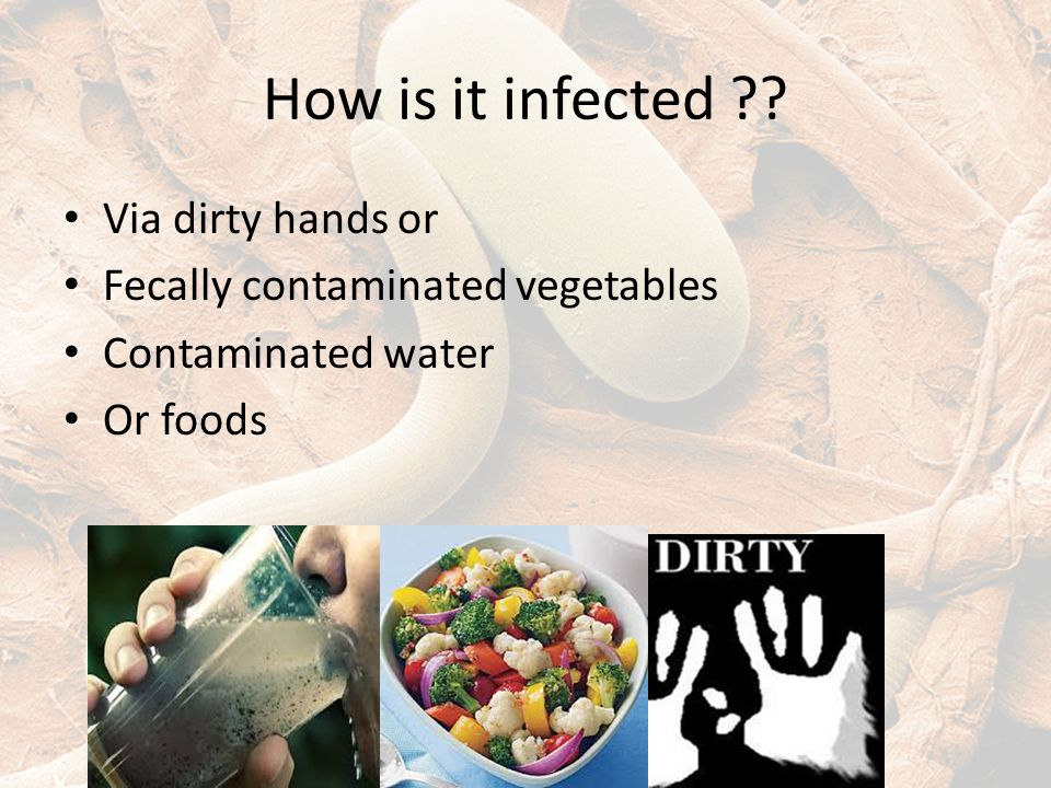 How is it infected ?? Via dirty hands or Fecally contaminated vegetables Contaminated water Or foods