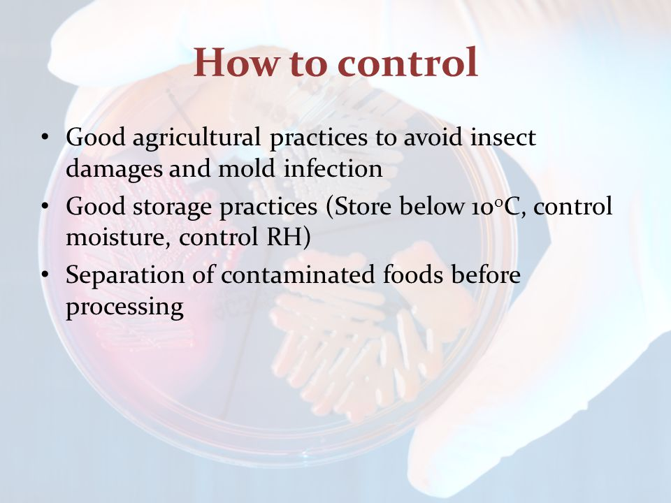 How to control Good agricultural practices to avoid insect damages and mold infection Good storage practices (Store below 10 0 C, control moisture, co