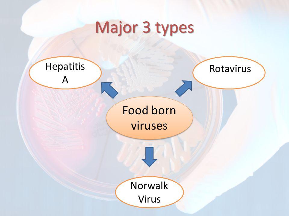 Major 3 types Food born viruses Hepatitis A Norwalk Virus Rotavirus
