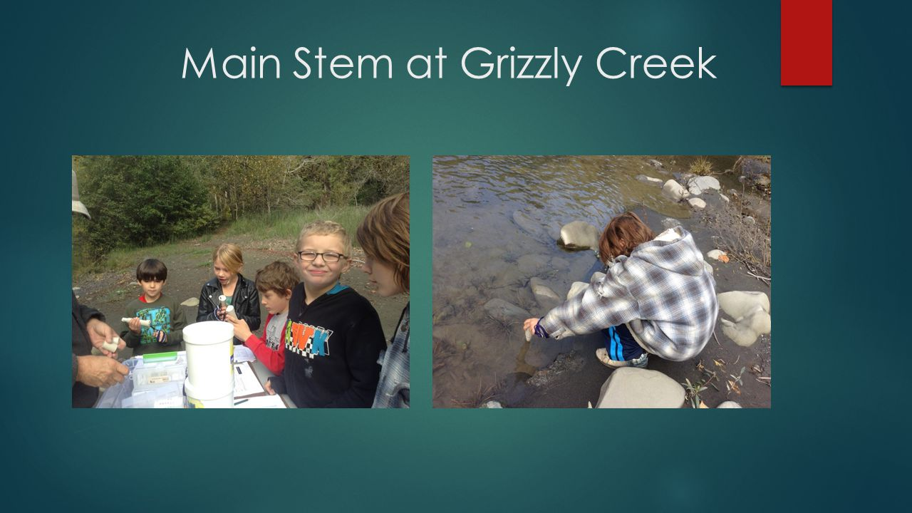 Main Stem at Grizzly Creek