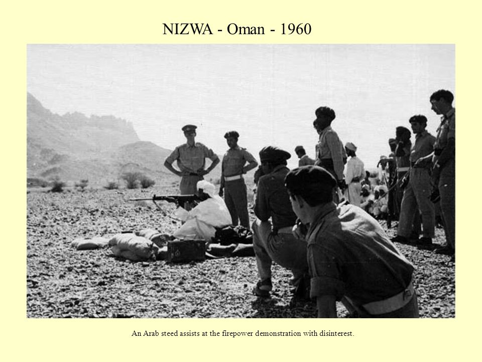 NIZWA - Oman - 1960 An Arab steed assists at the firepower demonstration with disinterest.