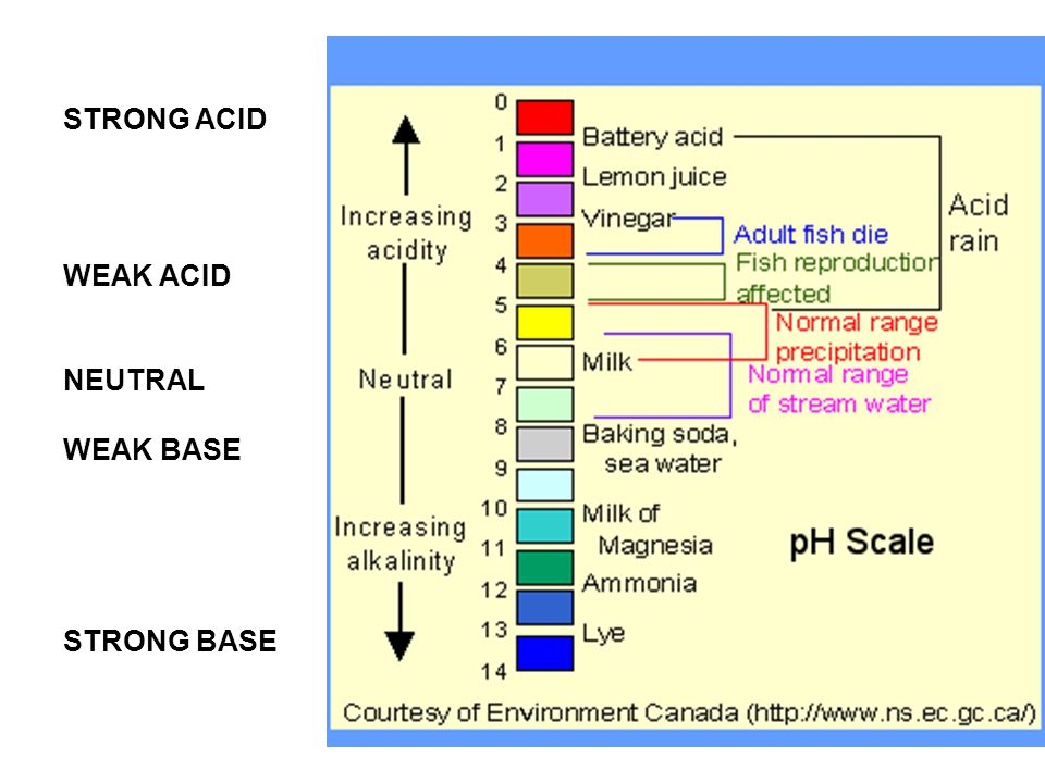 Animations Move the pH scale arrow pH AnimationpH Animation How the pH scale was born: Acids & Bases: Acids, Bases, & Water - The pH ScaleAcids & Bases: Acids, Bases, & Water - The pH Scale