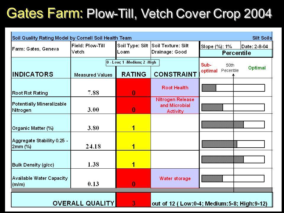 Gates Farm: Plow-Till, Vetch Cover Crop 2004