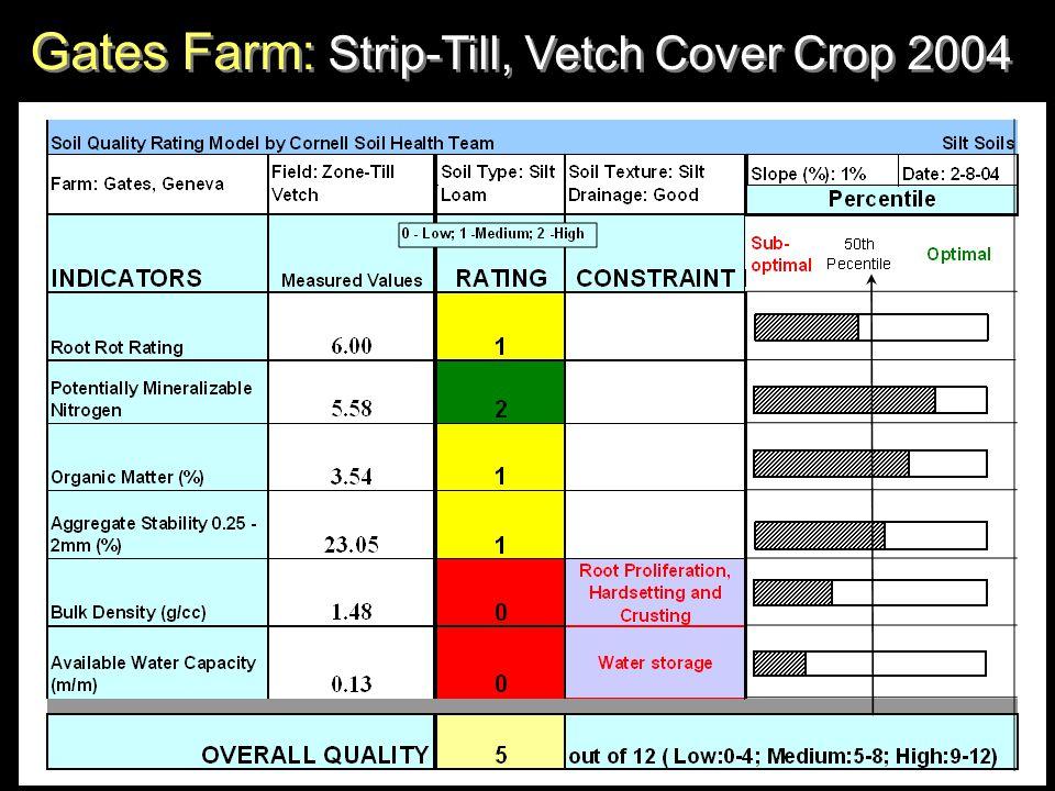Gates Farm: Strip-Till, Vetch Cover Crop 2004