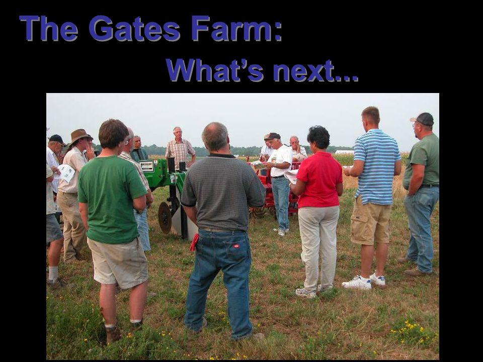 The Gates Farm: What's next...