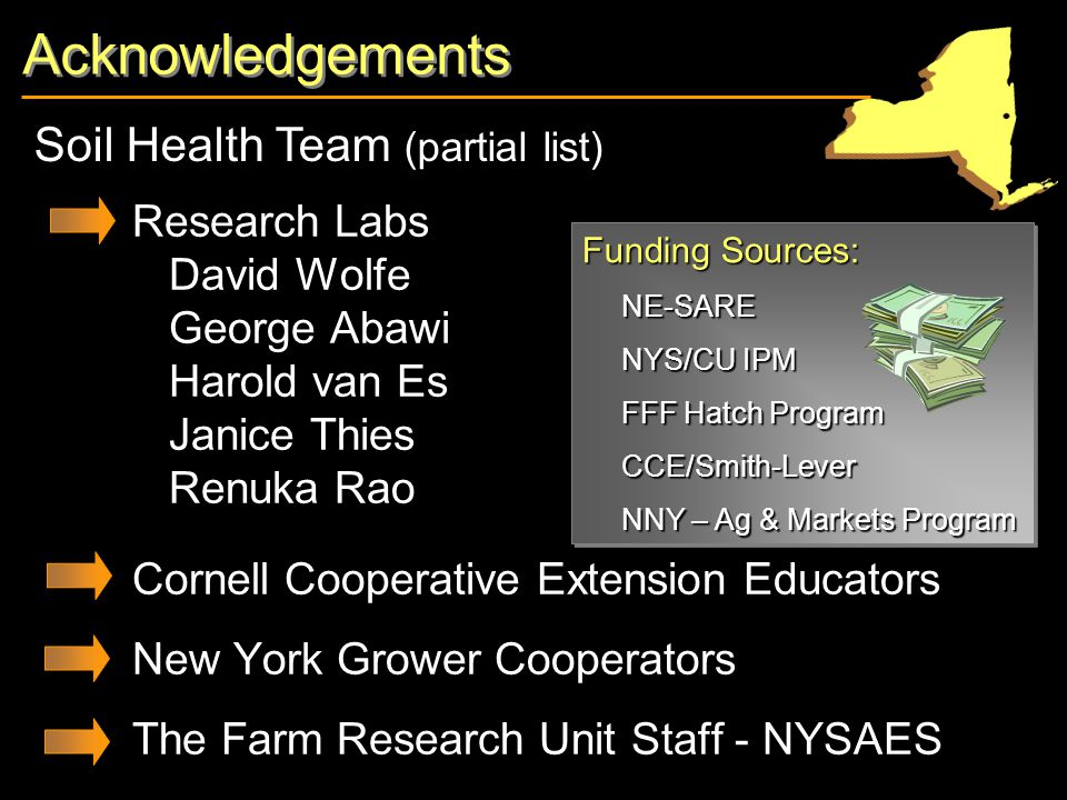 Acknowledgements Research Labs David Wolfe George Abawi Harold van Es Janice Thies Renuka Rao Cornell Cooperative Extension Educators New York Grower Cooperators The Farm Research Unit Staff - NYSAES Soil Health Team (partial list) Funding Sources: NE-SARE NYS/CU IPM FFF Hatch Program CCE/Smith-Lever NNY – Ag & Markets Program Funding Sources: NE-SARE NYS/CU IPM FFF Hatch Program CCE/Smith-Lever NNY – Ag & Markets Program