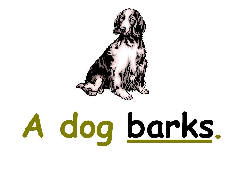 A dog ____.barks