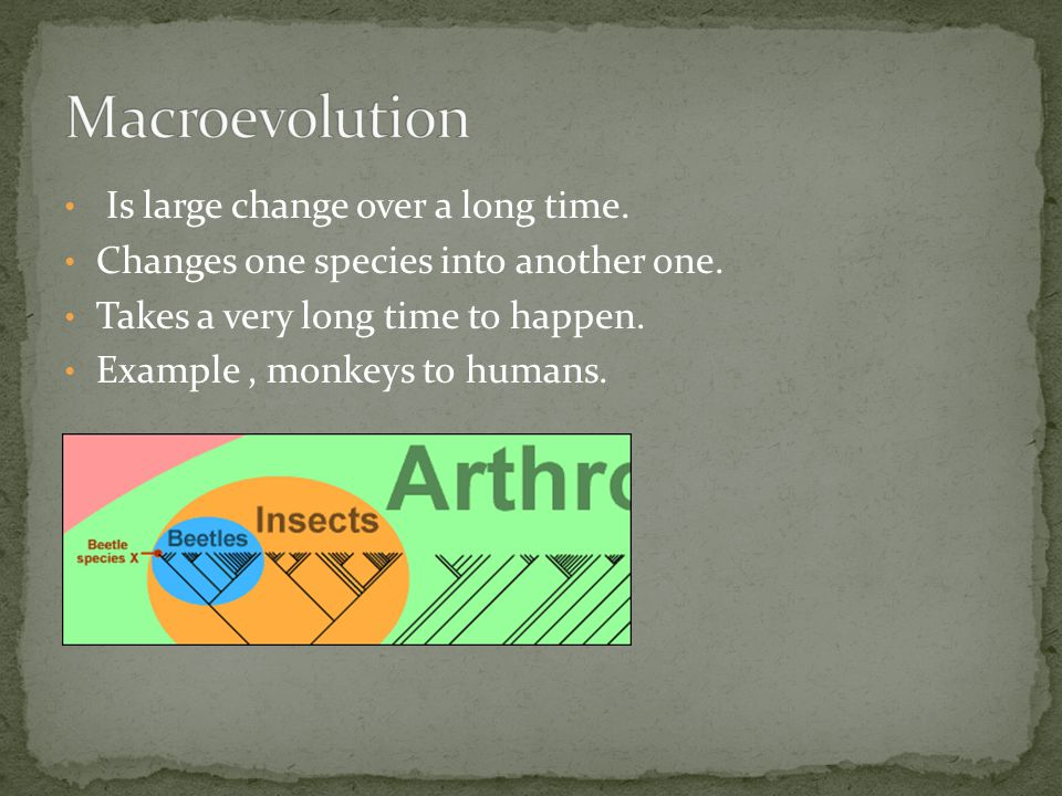 Is large change over a long time. Changes one species into another one. Takes a very long time to happen. Example, monkeys to humans.