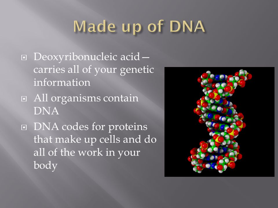  Deoxyribonucleic acid— carries all of your genetic information  All organisms contain DNA  DNA codes for proteins that make up cells and do all of