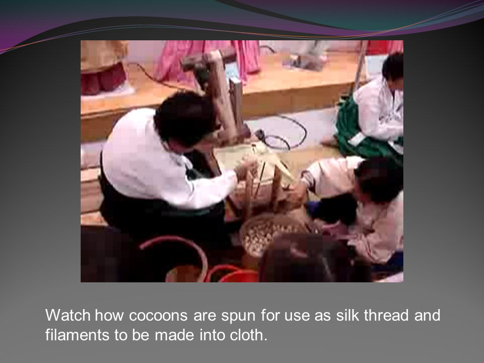 Watch how the cocoons are soaked and stretched.