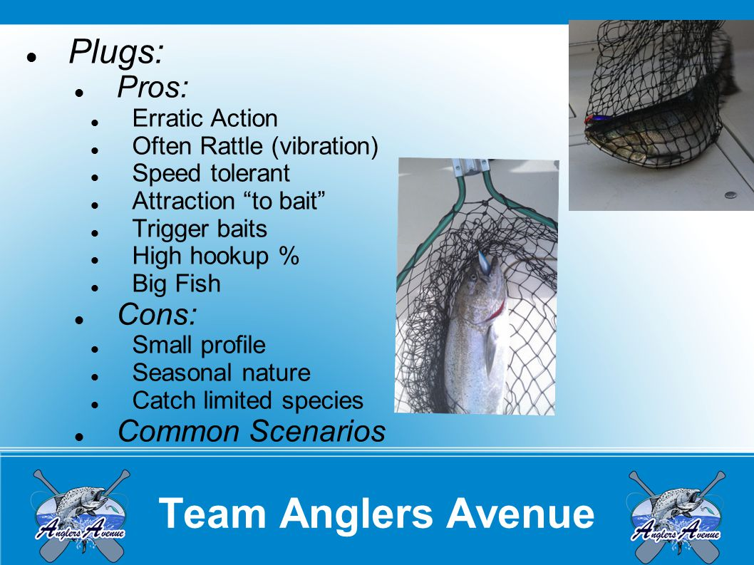 Team Anglers Avenue Flasher or Dodger/Fly: Pros: Visual Attraction Wide color selection Customizable options Large Profile Cons: Special Equipment Particular Rods Attraction away from bait Relative cost Common Scenarios:
