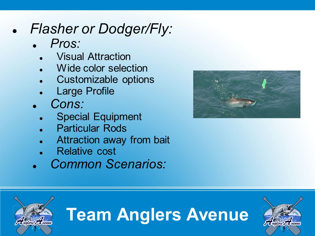 Team Anglers Avenue Meat Rigs: Pros: Visual Attraction Wide color selection Customizable options Large Profile Scent.