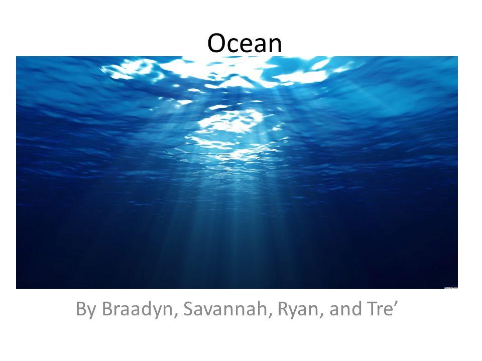 Ocean By Braadyn, Savannah, Ryan, and Tre'