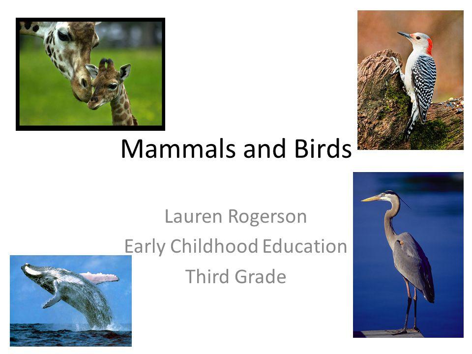 Mammals and Birds Lauren Rogerson Early Childhood Education Third Grade