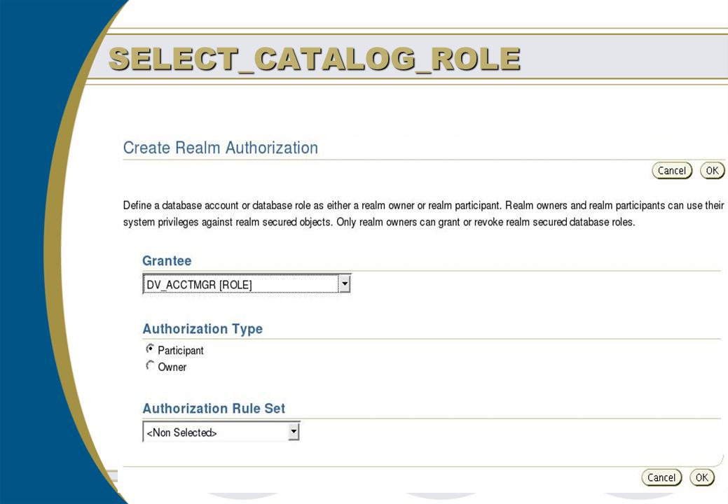 SELECT_CATALOG_ROLE