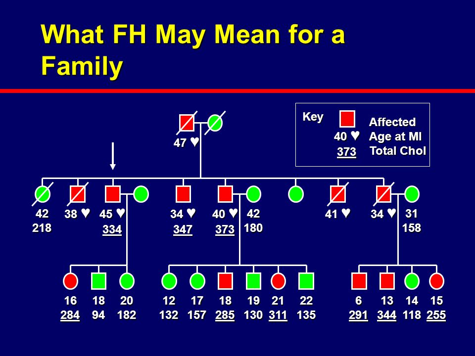 What FH May Mean for a Family 45 ♥ 334 47 ♥ 42218 38 ♥ 34 ♥ 347 40 ♥ 373 41 ♥ 34 ♥ 16284189420182 4218031158 12132171571828519130213112213562911334414