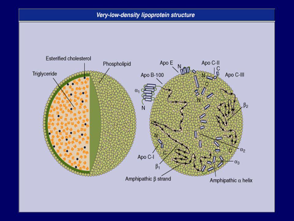 Niacin vs.Fibrates for Mixed Dyslipidemia, DM & Met.