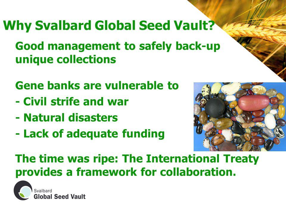 Why Svalbard Global Seed Vault.
