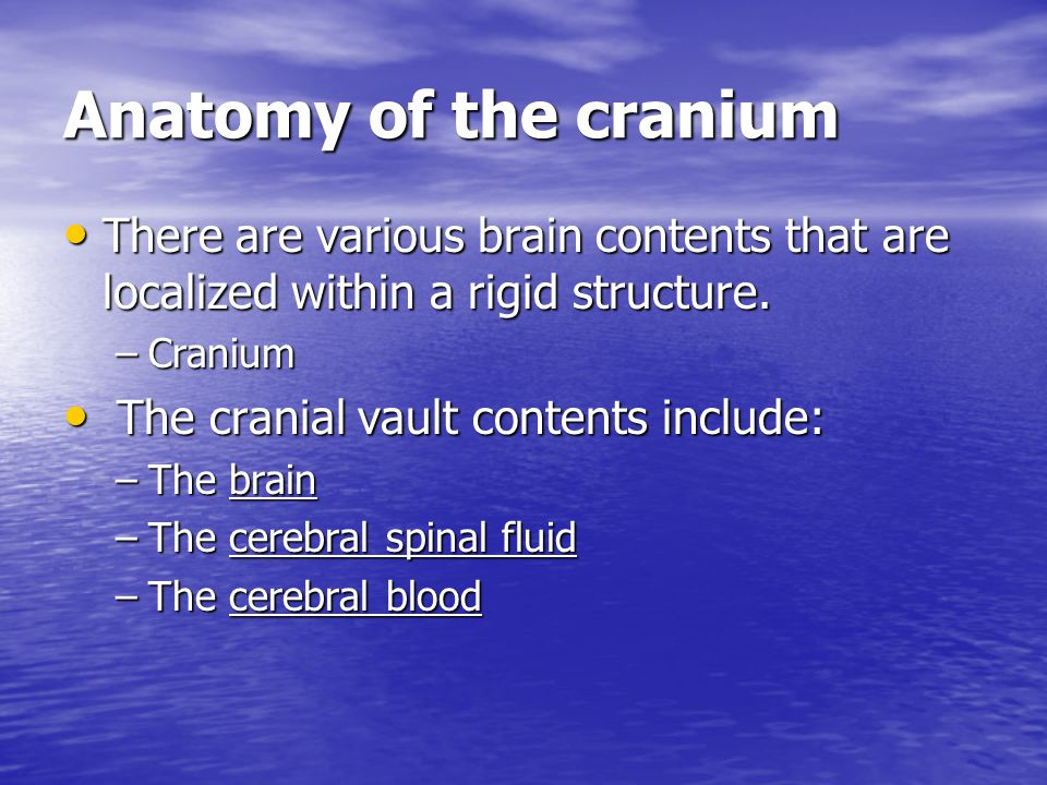 Anatomy of the cranium There are various brain contents that are localized within a rigid structure. There are various brain contents that are localiz