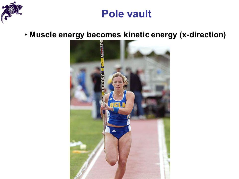 Pole vault Muscle energy becomes kinetic energy (x-direction)