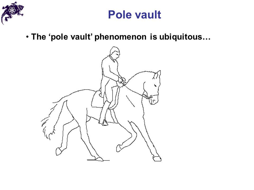 Pole vault The 'pole vault' phenomenon is ubiquitous…