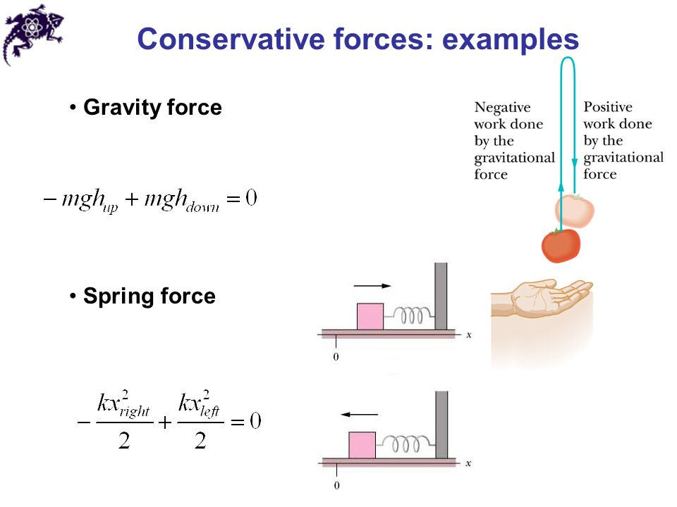 Conservative forces: examples Gravity force Spring force