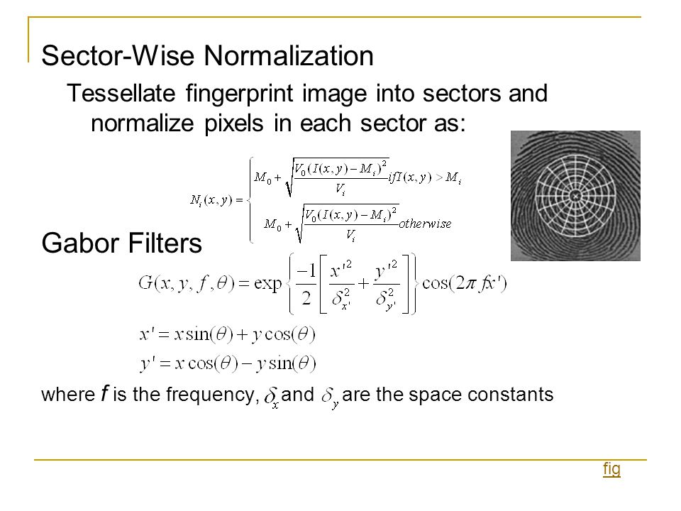 Sector-Wise Normalization Tessellate fingerprint image into sectors and normalize pixels in each sector as: Gabor Filters where f is the frequency, an