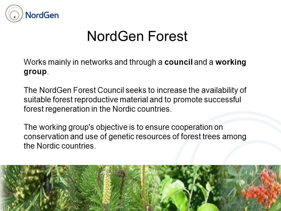 NordGen Forest Works mainly in networks and through a council and a working group. The NordGen Forest Council seeks to increase the availability of su