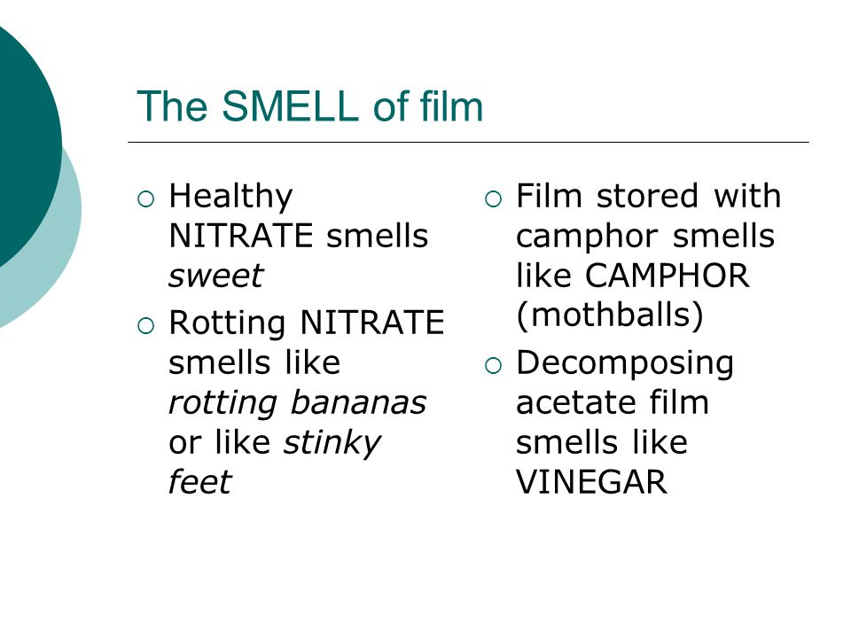 The SMELL of film  Healthy NITRATE smells sweet  Rotting NITRATE smells like rotting bananas or like stinky feet  Film stored with camphor smells l