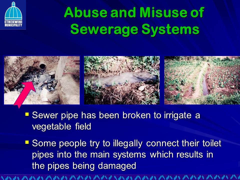  Sewer pipe has been broken to irrigate a vegetable field  Some people try to illegally connect their toilet pipes into the main systems which results in the pipes being damaged