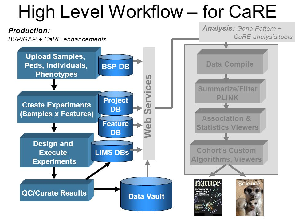 High Level Workflow – for CaRE Upload Samples, Peds, Individuals, Phenotypes Create Experiments (Samples x Features) Summarize/Filter PLINK Data Vault QC/Curate Results Design and Execute Experiments Project DB LIMS DBs BSP DB Association & Statistics Viewers Cohort's Custom Algorithms, Viewers Web Services Data Compile Feature DB Analysis: Gene Pattern + CaRE analysis tools Production: BSP/GAP + CaRE enhancements