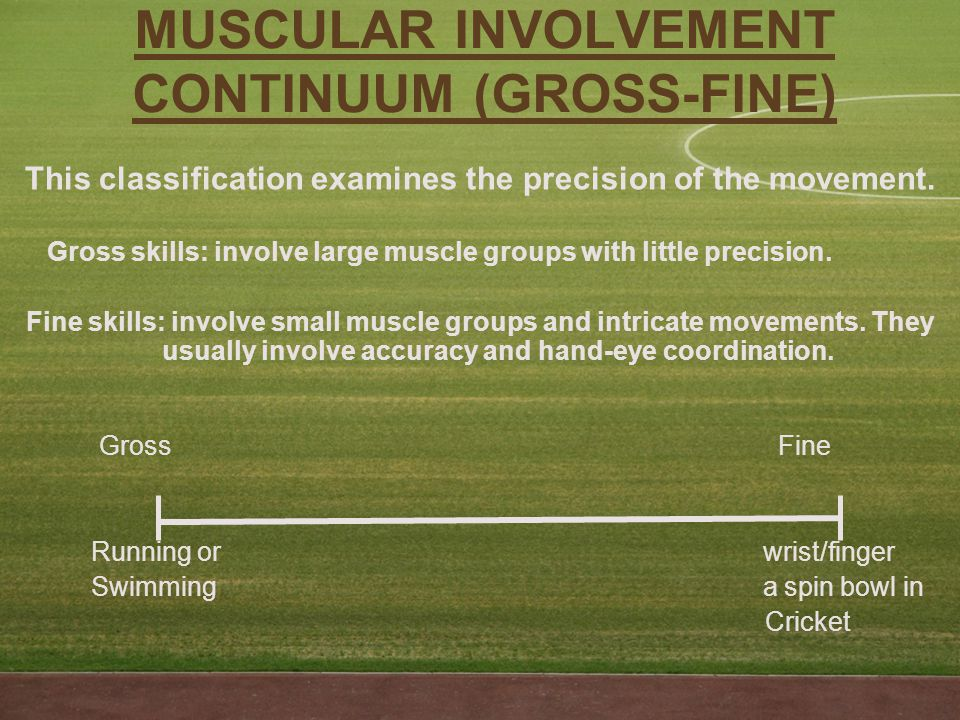 MUSCULAR INVOLVEMENT CONTINUUM (GROSS-FINE) This classification examines the precision of the movement.